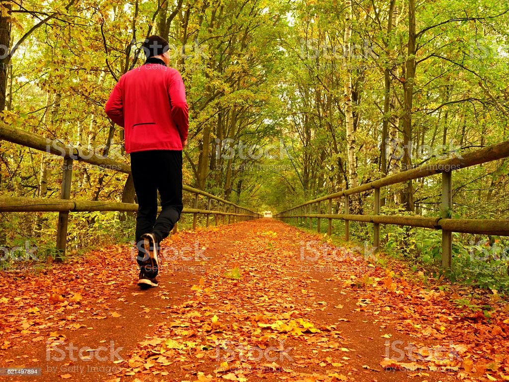 Sportsman in  black sortswear run on road covered,  autumn leaves. foto stock royalty-free