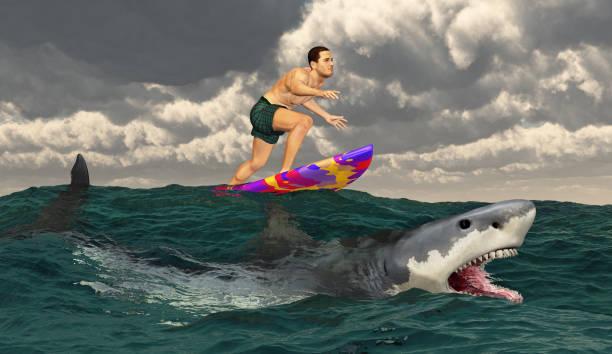 sportler auf einem surfbrett und great white shark - digital surfer stock-fotos und bilder
