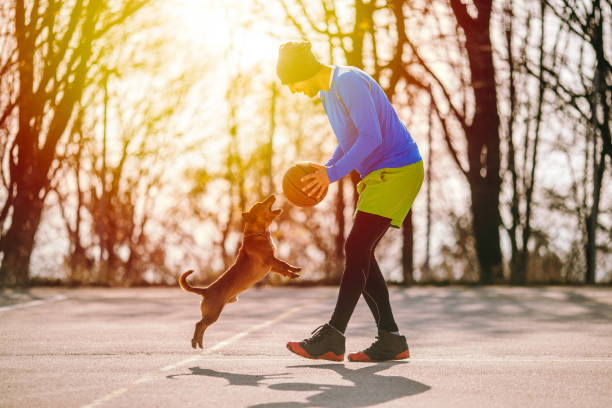 Sportsman playing basketball with dog picture id1070772196?b=1&k=6&m=1070772196&s=612x612&w=0&h=i4g3oyhc9k2f d41oktx36xz6k6aom2uiqdfpygnwhs=