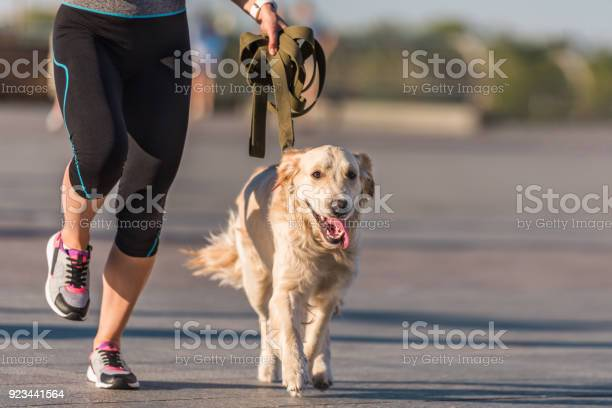 Sportswoman jogging with dog picture id923441564?b=1&k=6&m=923441564&s=612x612&h= 0mf7pnheoguexjybampxjvn ruokdbxoqhajbbe5zm=