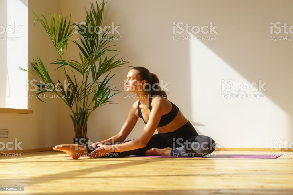 sporty female doing gym exercise - Royalty-free Adult Stock Photo