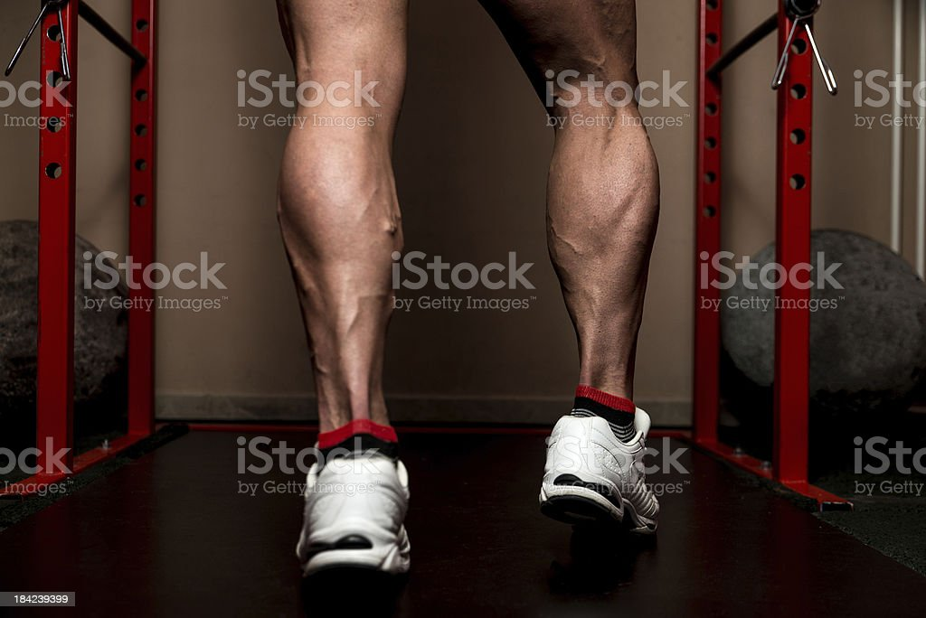 Sporty Legs Calf stock photo