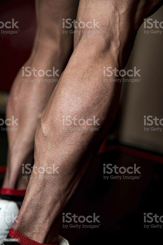 Sporty Legs Calf royalty-free stock photo