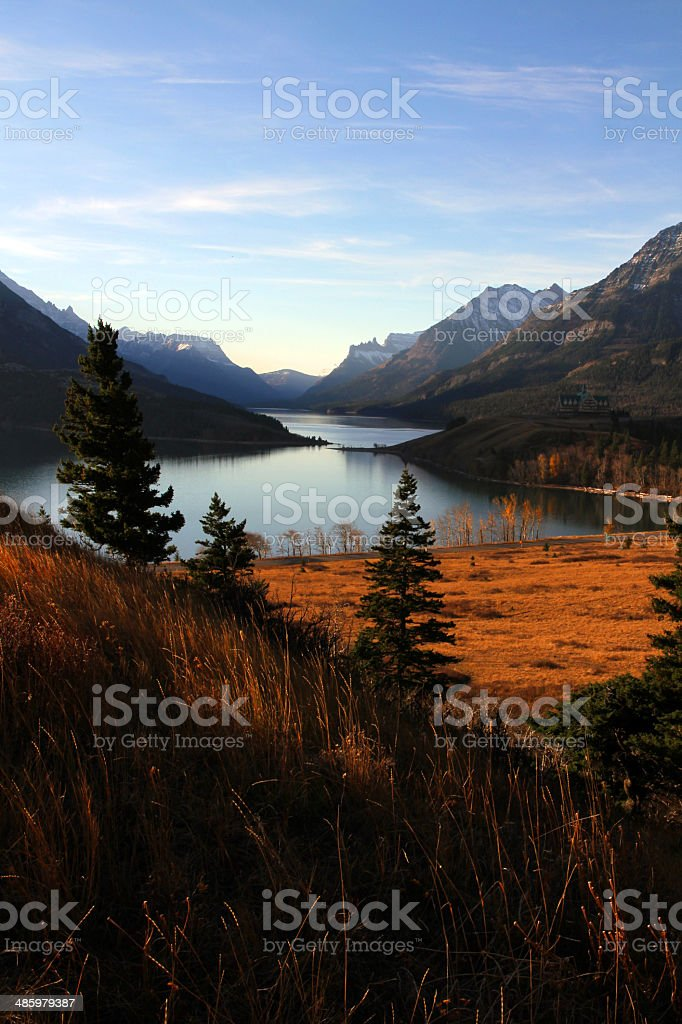 Spot of Nature royalty-free stock photo