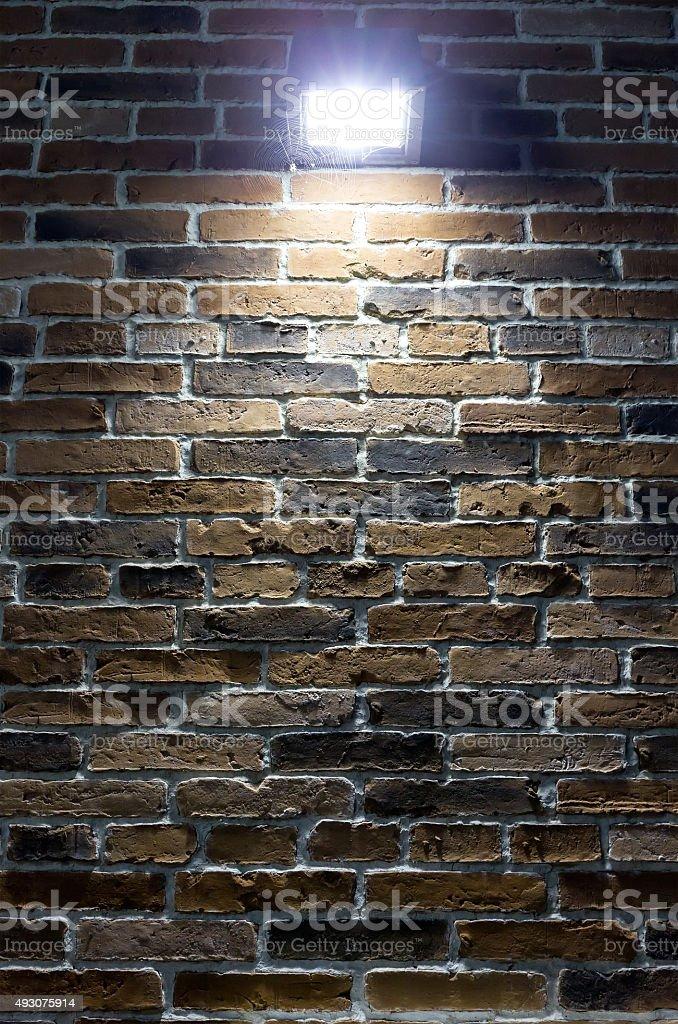 Projecteurs sur mur de briques avec web de nuit - Photo