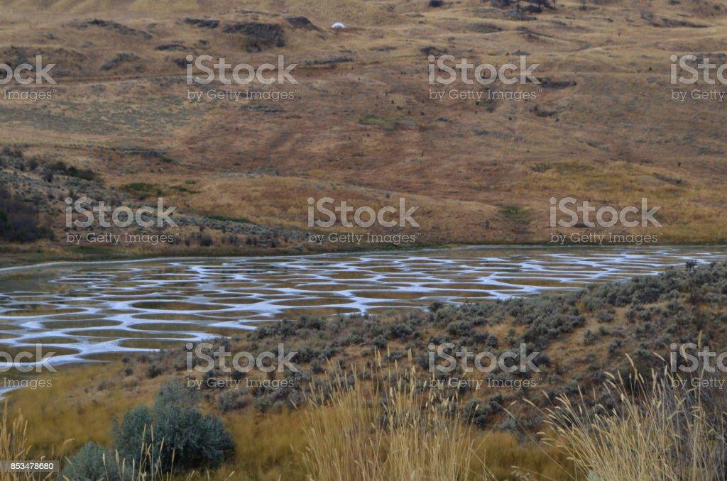 Spotted lake Okanagan stock photo