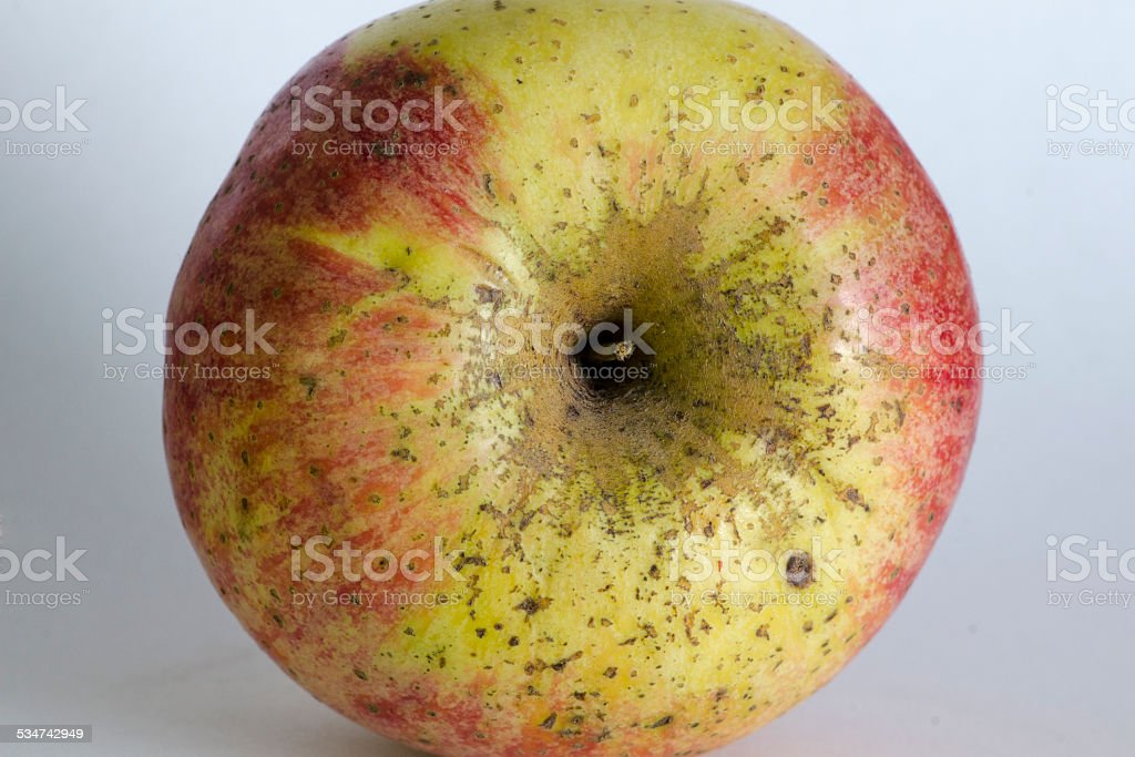 Spotted organic apple stock photo