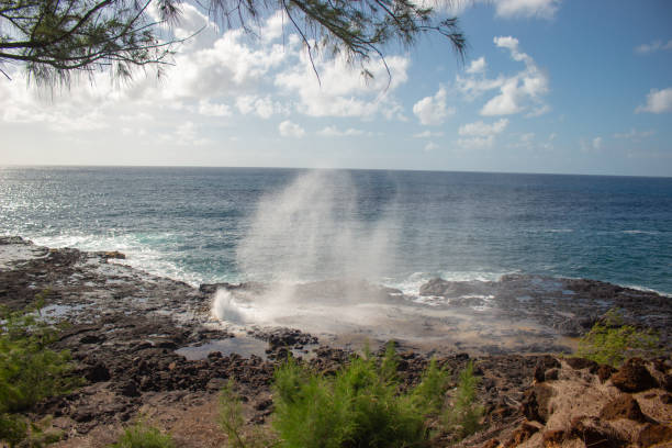 Spouting Horn in Hawaii stock photo