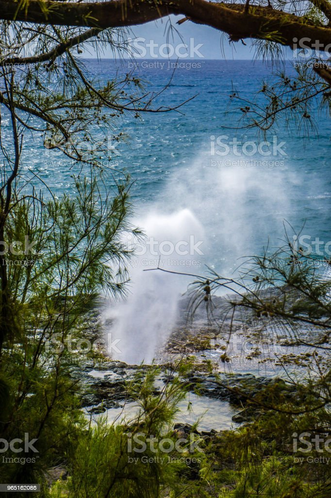 Spouting Horn royalty-free stock photo