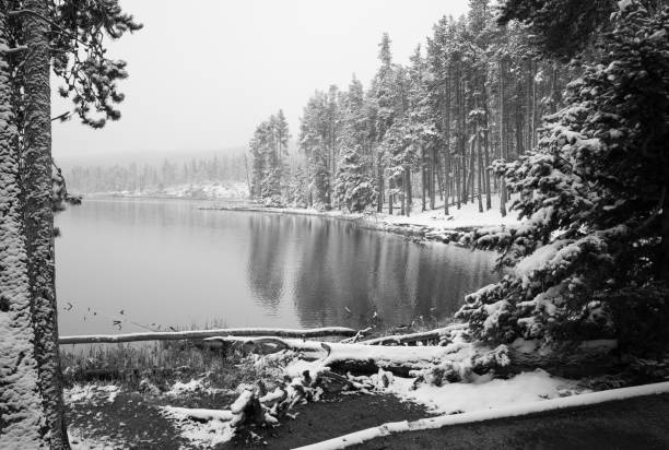 Sprague Lake at Rocky Mountain National Park with snow Sprague Lake at Rocky Mountain National Park with snow rocky mountain national park stock pictures, royalty-free photos & images