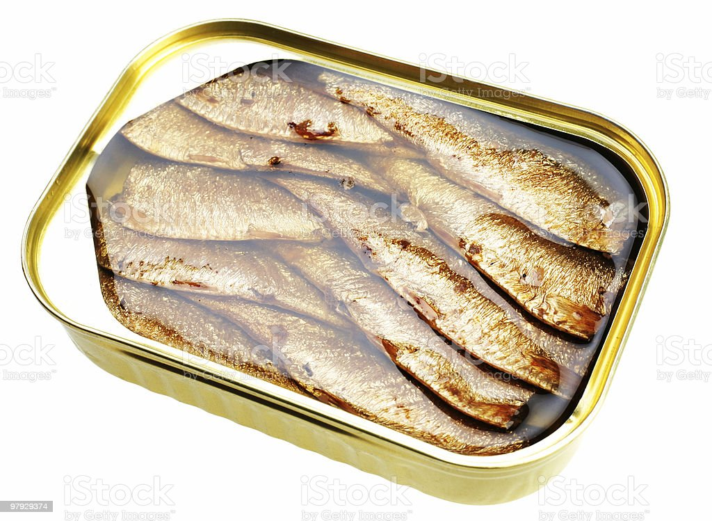 Sprat fish canned royalty-free stock photo
