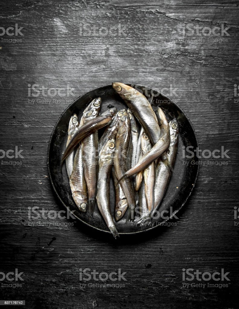 Sprat in the old pan. stock photo