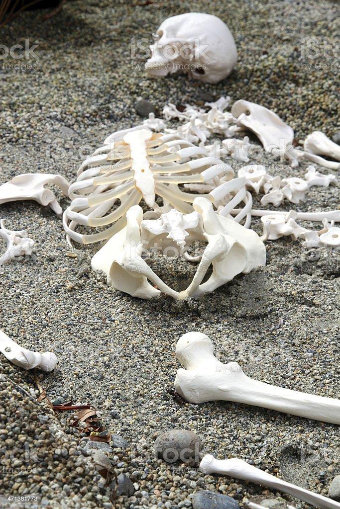 Sprawled Corpse stock photo