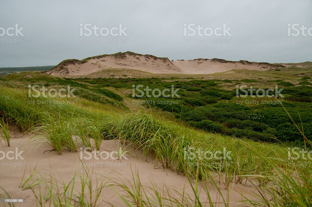 Sprawling expanse of the Greenwich dunes royalty-free stock photo