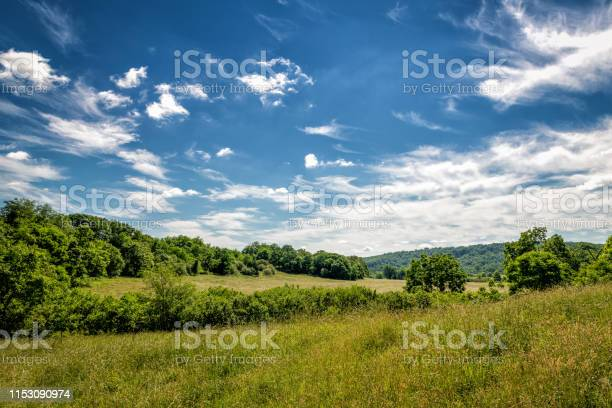 Photo of Sprawling field on a summer morning in the foothills of Virginia