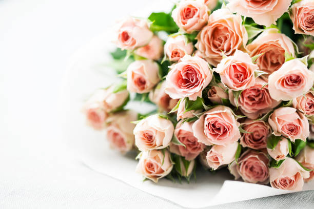 Spray roses picture id643947478?b=1&k=6&m=643947478&s=612x612&w=0&h=yp9xiqnxqvl2kkn475t lus pyy3yo7zmuiehspdhb0=