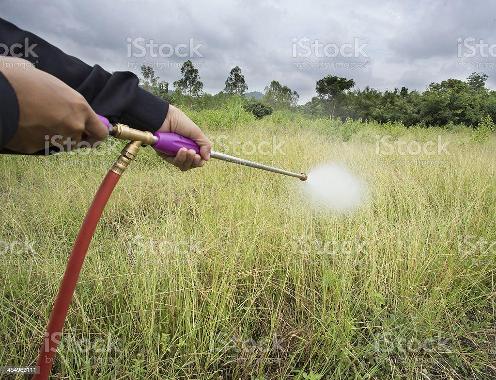 Spray weeding stock photo