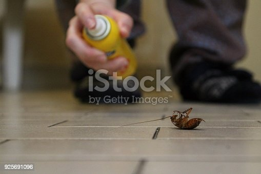A person kills a cockroach