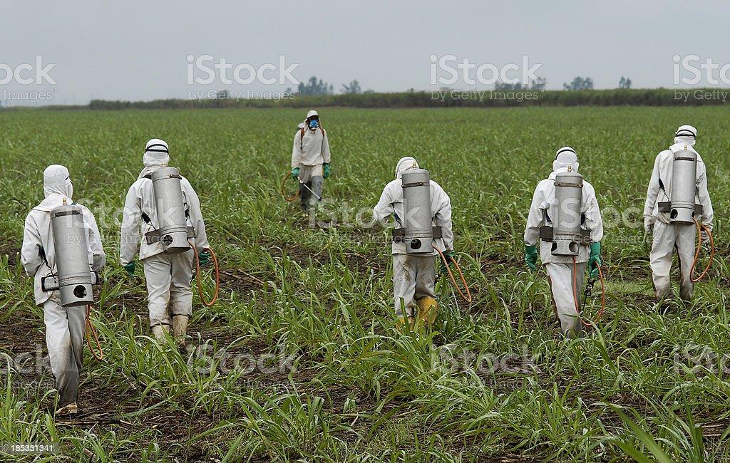 spraying herbicide stock photo