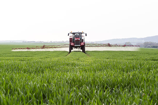 Spraying Spraying the herbicides on the green field oat crop stock pictures, royalty-free photos & images