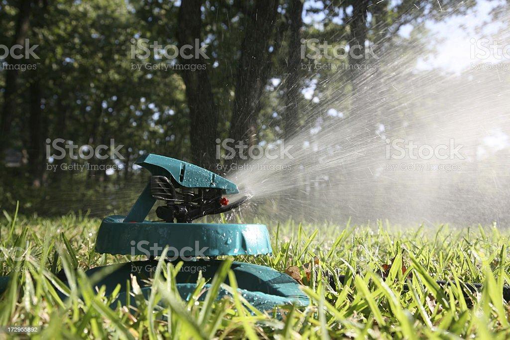 T Rainforest Lawn Sprinkler