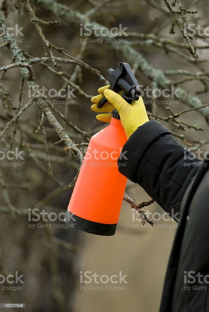 Spraying sticks royalty-free stock photo