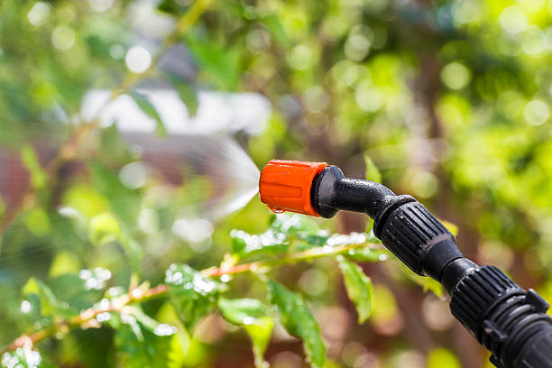 Spraying trees against pests Spraying the leaves of trees against pests with chemicals crop sprayer stock pictures, royalty-free photos & images