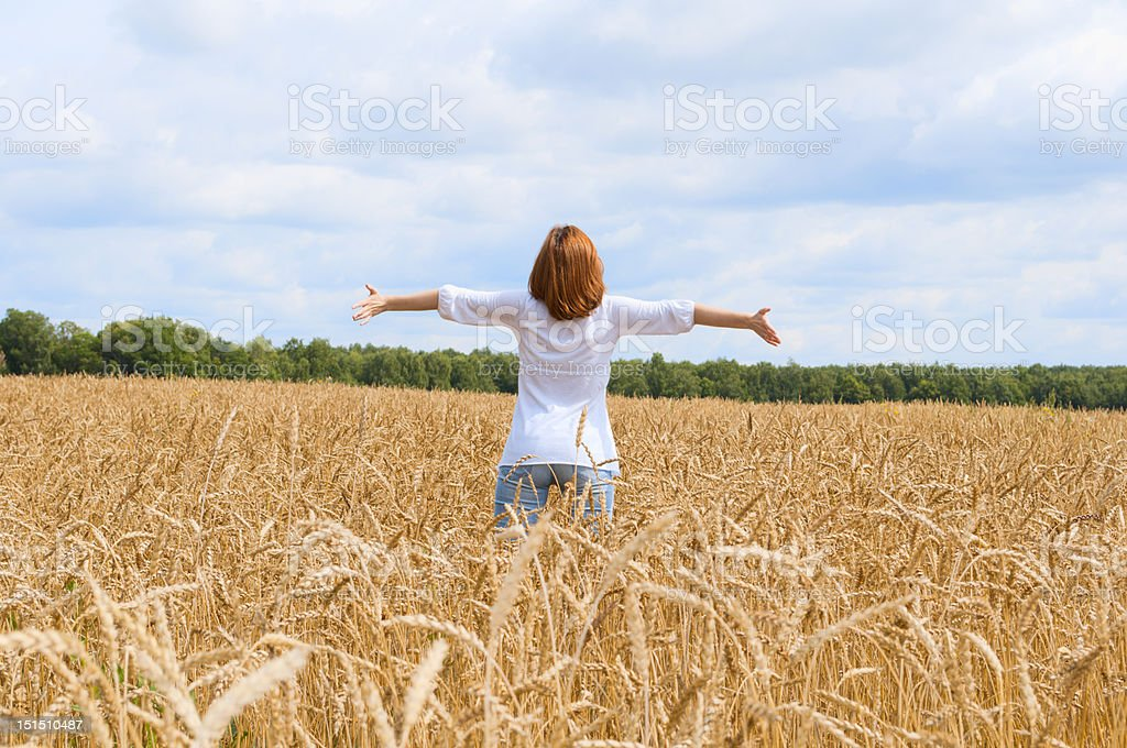 Spreadeagled woman in the gold field royalty-free stock photo