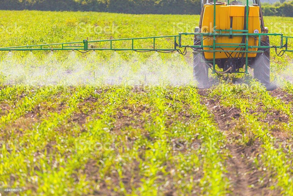 Spreading herbicide stock photo