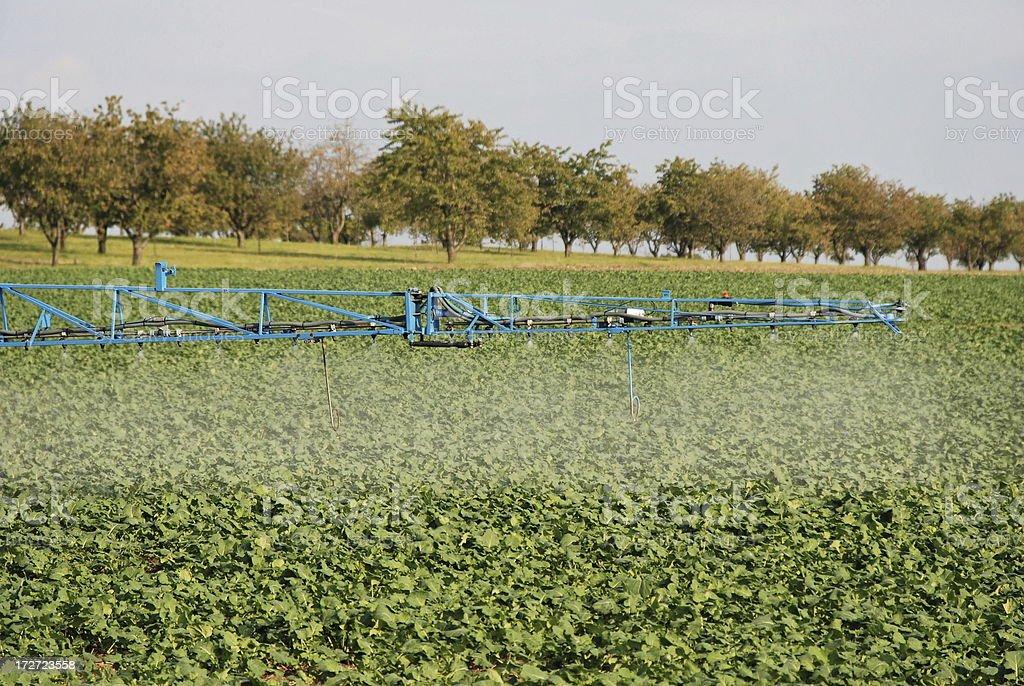 spreading pesticide royalty-free stock photo