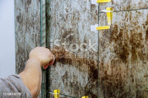 1138442636 istock photo Spreading wet mortar before applying tiles on bathroom floor 1213614273