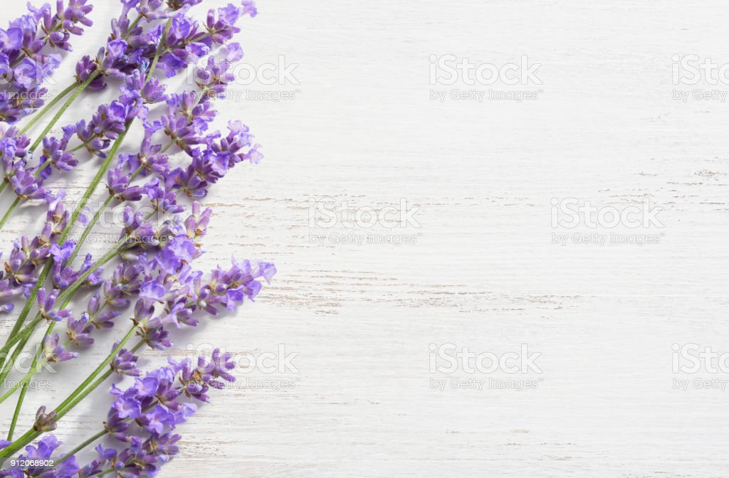 Sprigs of lavender on  wooden shabby background. stock photo