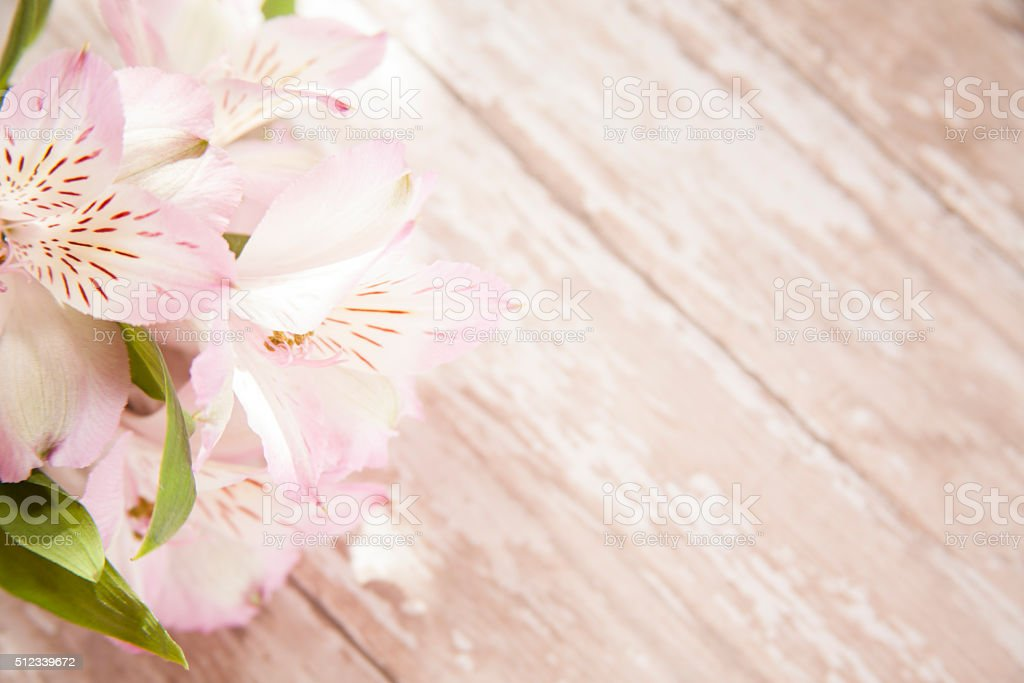 Spring Alstroemeria flowers.  Mother's Day. stock photo