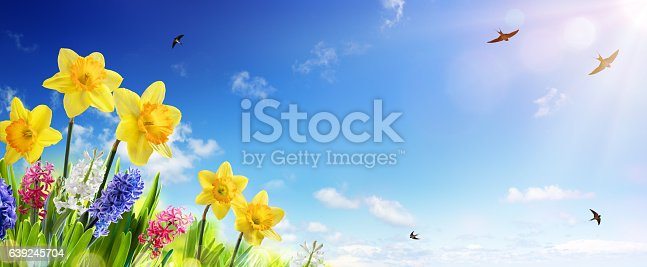 639245704 istock photo Spring And Easter Banner 639245704