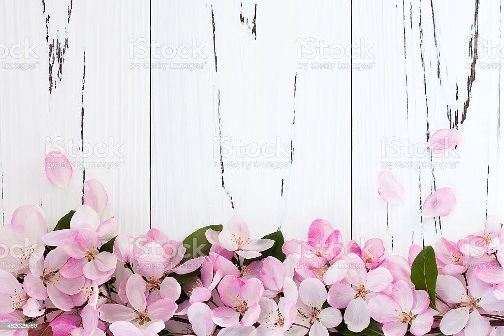 Fondo De Madera Vintage Con Flores Blancas Manzana Y: Primavera Manzana Flores Sobre Fondo De Madera Vintage