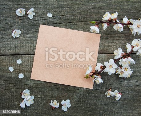 istock Spring apricot  blossom and card 675026546