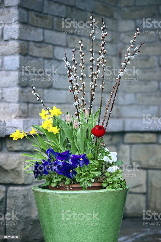 Spring Arrangement stock photo