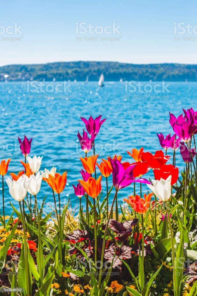 Frühling am Bodensee, Überlingen, Deutschland – Foto