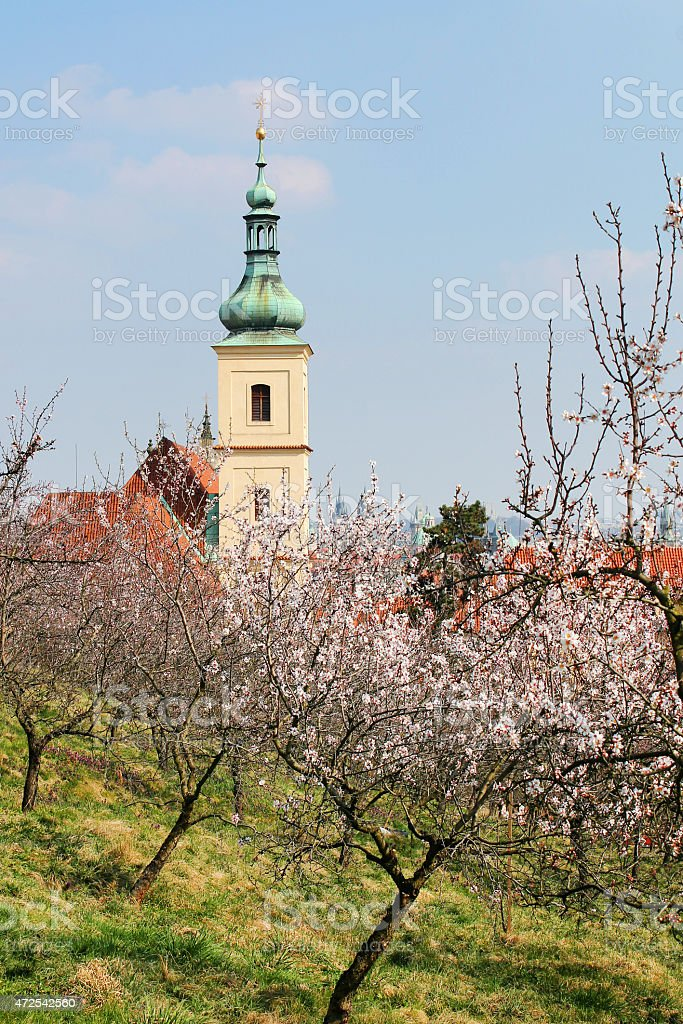 Spring at Prague stock photo