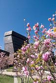 San Francisco, CA,USA - April 21, 2018 : Day view of de Young Museum in San Francisco, CA on April 21,2018.
