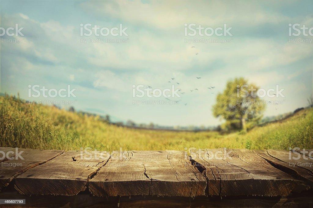 Frühling Hintergrund – Foto