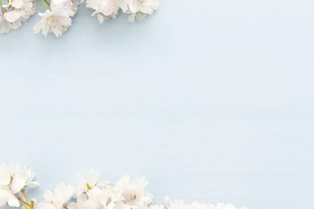 frühling hintergrund - holzblumen stock-fotos und bilder