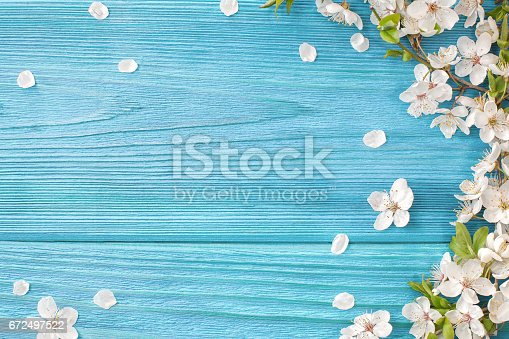 istock Spring background 672497522