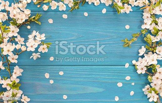 istock Spring background 672497560