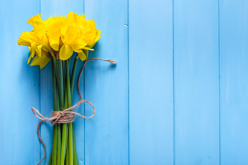 Spring background with daffodils on wooden table