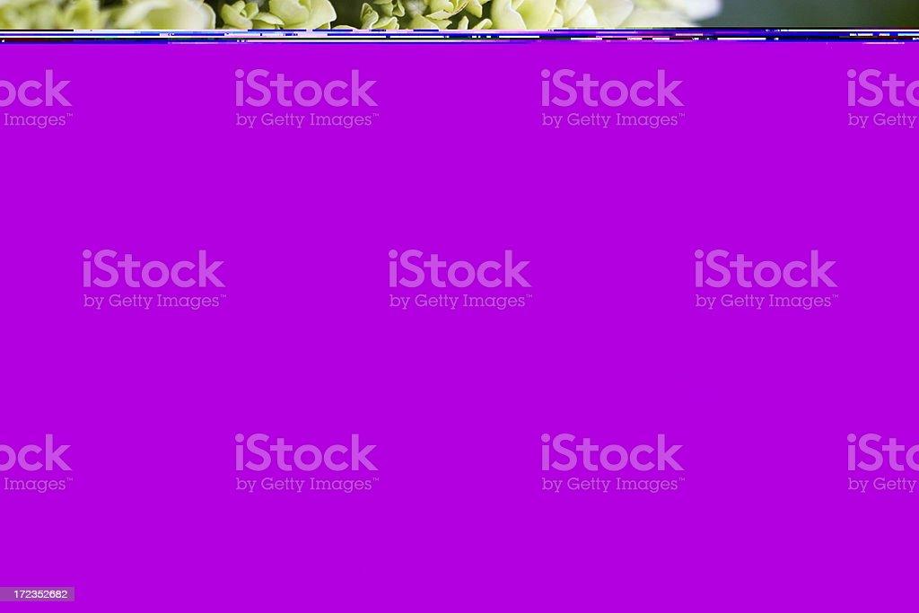 Resorte de sangre foto de stock libre de derechos
