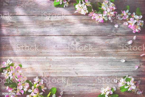 Photo of Spring blooming branches on wooden background
