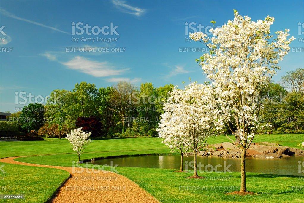 Milhares de flores em um jardim de esculturas - foto de acervo