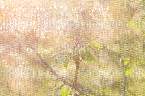Spring blooms in a morning orchard. Apple tree branch with pink petals. Bright sunlight. Digital watercolor painting