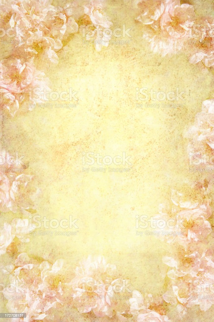 Spring blossom background royalty-free stock photo